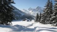 Grand Chalet skis-aux-pieds de 12 chambres sur domaine skiable Les Carroz