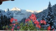 Vue chambre sur les Aravis chalet-refuge Alpes
