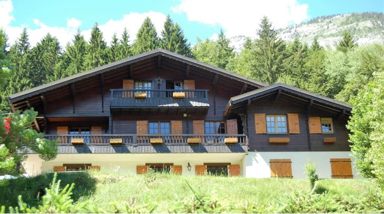 Family chalet and 3 independant apartments