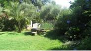 Centre-ville Marseille maison avec grand jardin à vendre