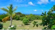 Propriété Caribéenne à Saint-Martin : le Parc Tropical